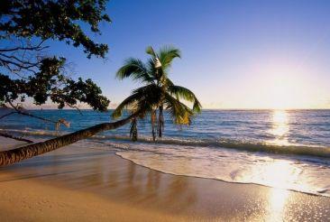 Сейшелы: экзотика тропических островов