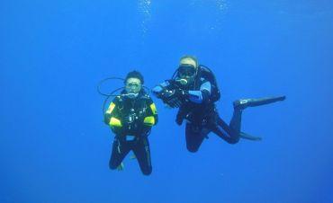 Underwater World Malta